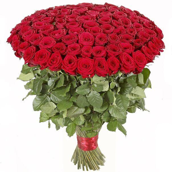 Доставка цветов азалия чебоксары, букет невесты бордовые каллы