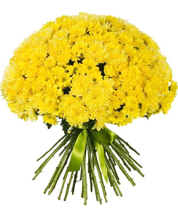 Доставка цветов хабаровск букетов - азалия чебоксары